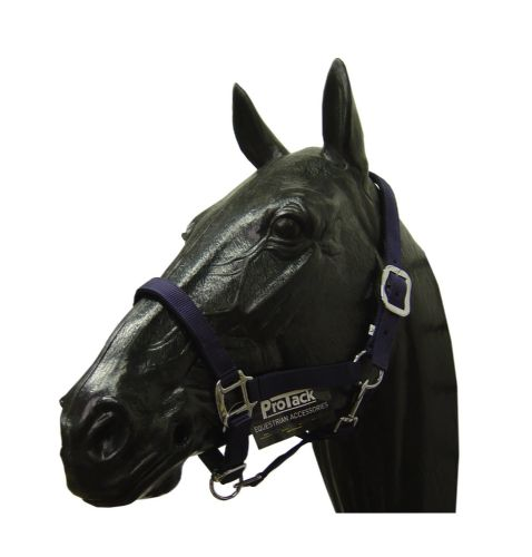 Protack - Adjustable Navy Head-collar - Pony Size - OFFER